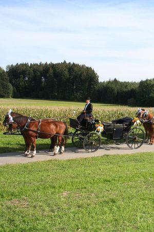 Kutschenfahrten Baumli, Römerswil