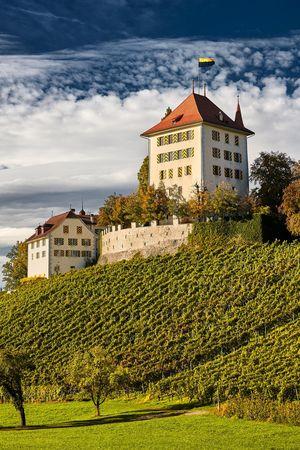 Schloss Heidegg, Gelfingen