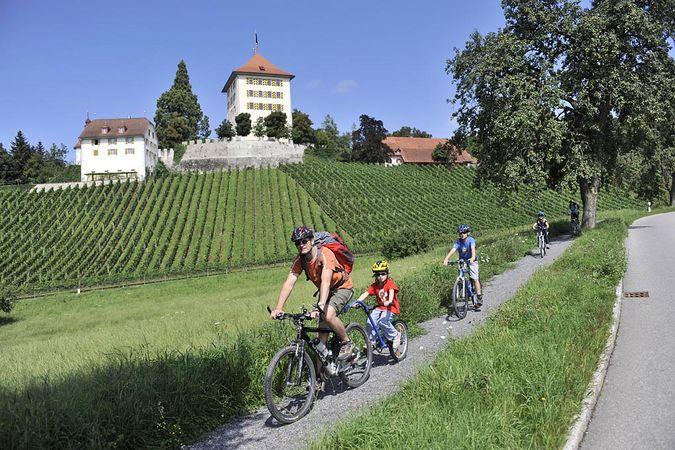 Seengen, Schloss Hallwyl - Gelfingen, Schloss Heidegg, eine Velotour vom Hallwiler- zum Baldeggersee