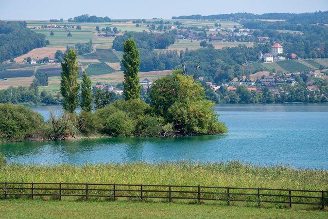 Hildisrieden - Herlisberg - Hitzkirch, Natur und Landschaft am Erlosen