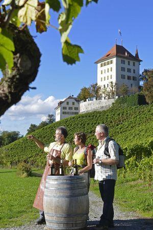 Weingut Schloss Heidegg, Gelfingen