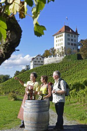 Weinregion Seetal