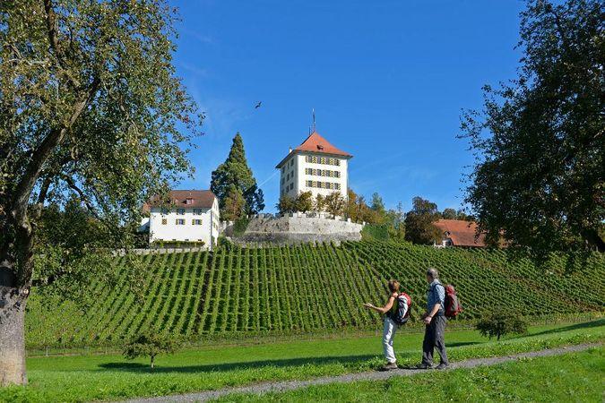 Hochdorf - Hohenrain - Lieli - Gelfingen