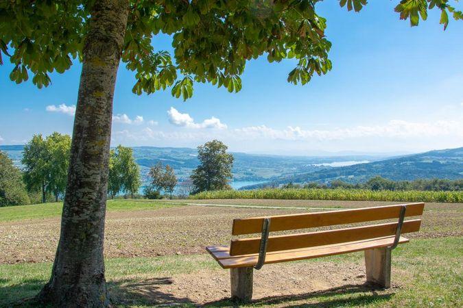 Boniswil - Homberg - Beinwil am See