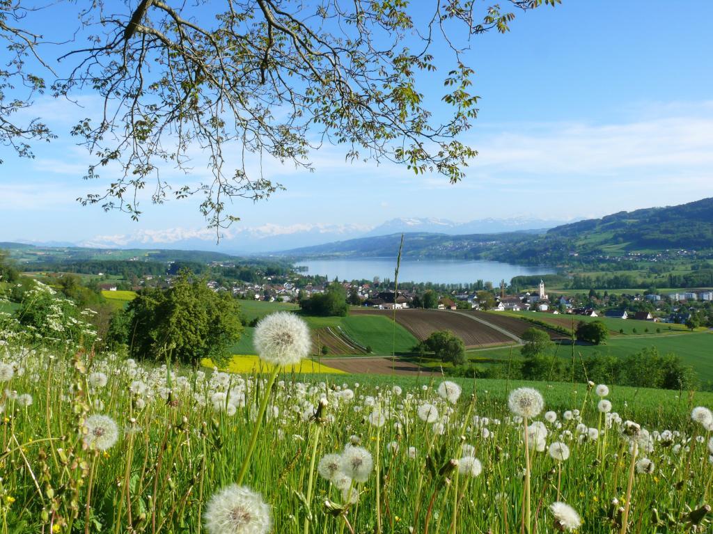 Mountainbike Tour im Tal der Schlösser und Seen