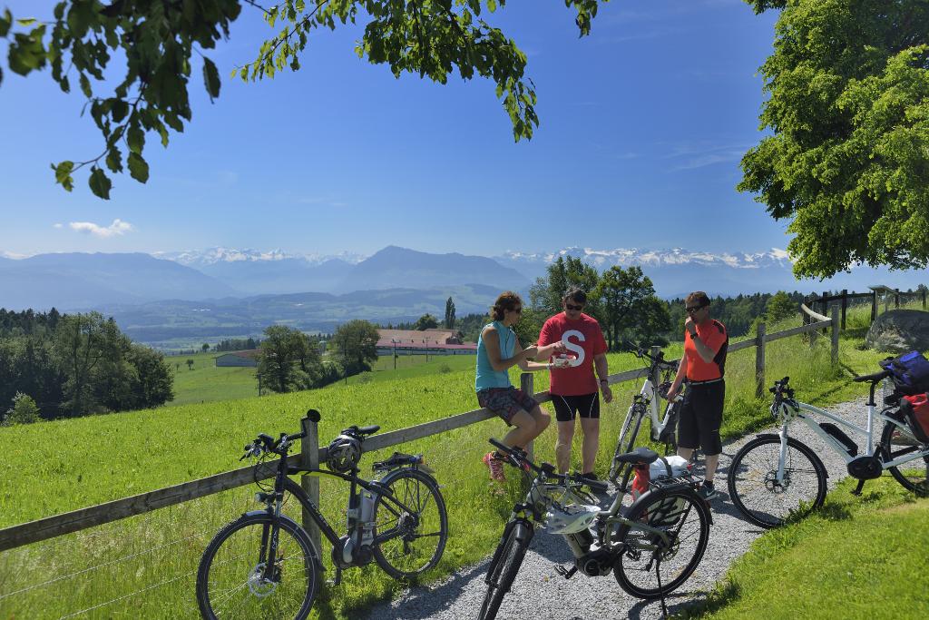 Herzschlaufe Seetal Ostast - SchweizMobil Route 599