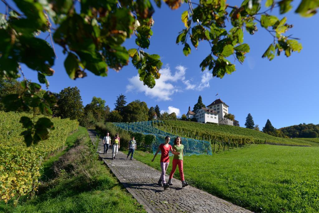 Vom Schloss Hallwyl nach Schloss Heidegg