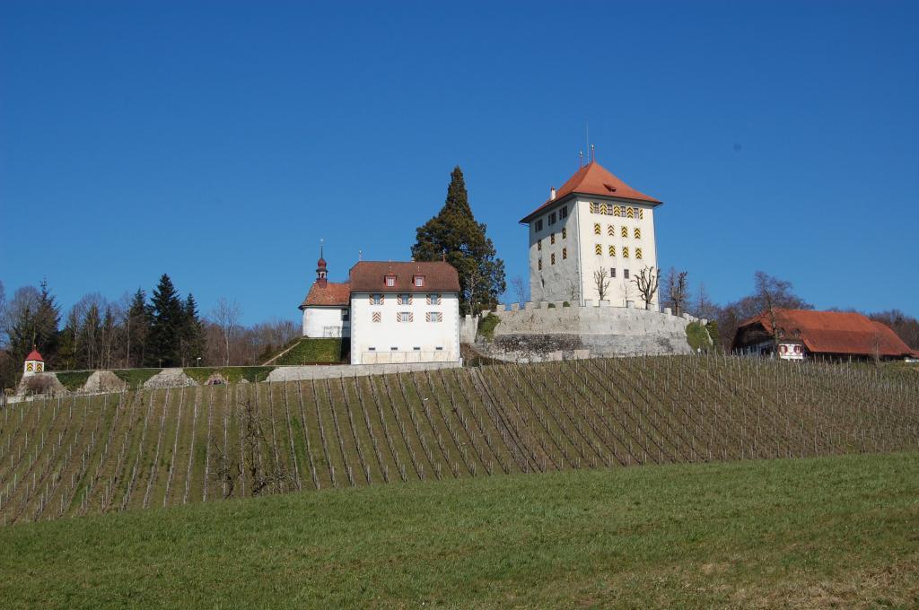 Baldegg – Schloss Heidegg – Gelfingen